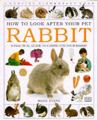 Rabbit (How to Look After Your Pet), Evans, Mark, Very Good Book