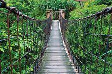Hängebrücke Dschungel- XXL Wandbild Dschungel Brücke- Poster 210 cm x 140 cm