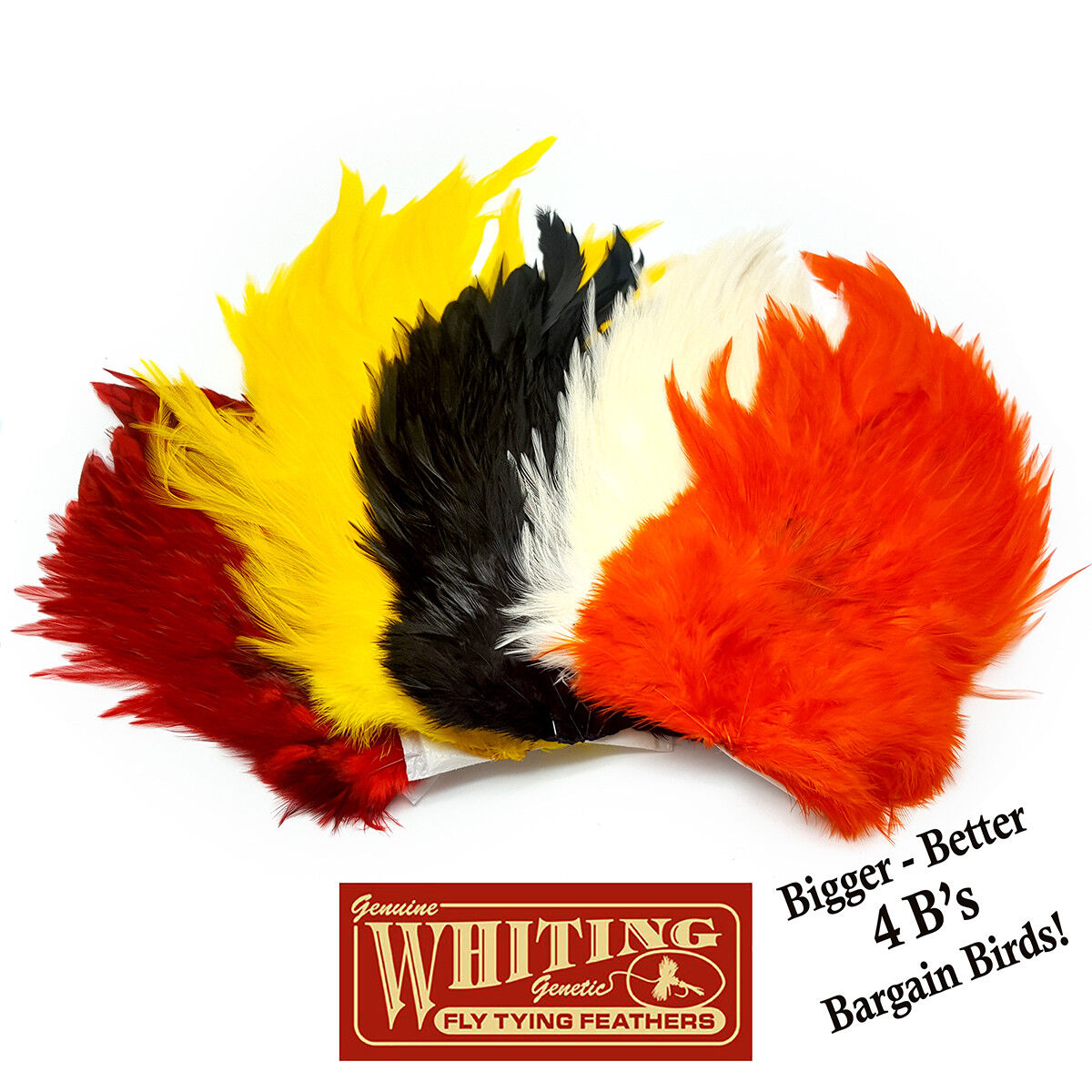 WHITING FARMS 4 B 's Rooster Saddle-diverses couleurs fly tying tying fly plusieurs boucliers Plumes d7a9f1