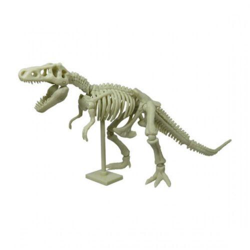 Tyrannosaurus Skeleton Dinosaur Movable Joints Action Figure from Japan