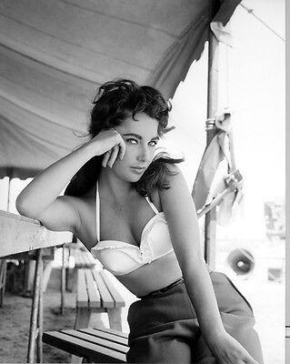 American Model /& Actress ELIZABETH TAYLOR Glossy 8x10 Photo Celebrity Print