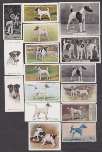 16 Different Vintage Smooth Fox Terrier TobaccoCandy Dog Cards Lot