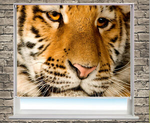 Printed-Picture-Photo-Roller-Blind-Tiger-close-up-animal-Blackout-Window-Blind