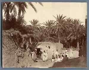 Algerie-Environs-de-Biskra-Vintage-albumen-print-Tirage-albumine