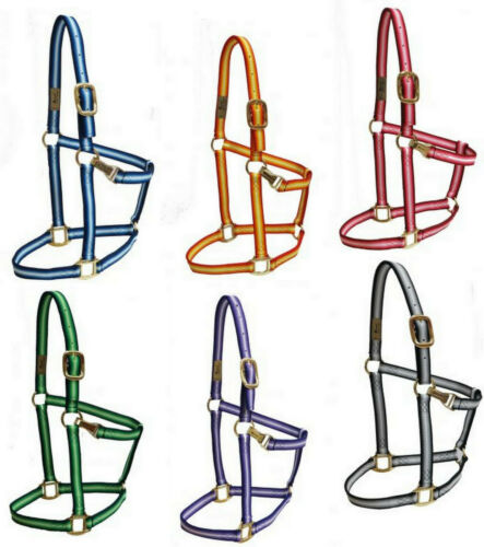 Western or English Horse or Pony or Large Horse Nylon Ombre Halter w// Equi Snap