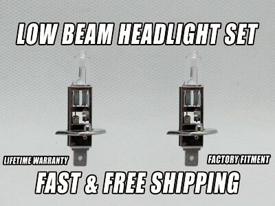 Front Headlight Bulb For Infiniti QX4 1999 2000 Low /& High Beam Qty 2 Stock Fit