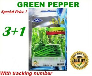 80-seeds-Green-Finger-Pepper-Sili-Pang-Sinigang-Hot-spicy-VEGETABLE