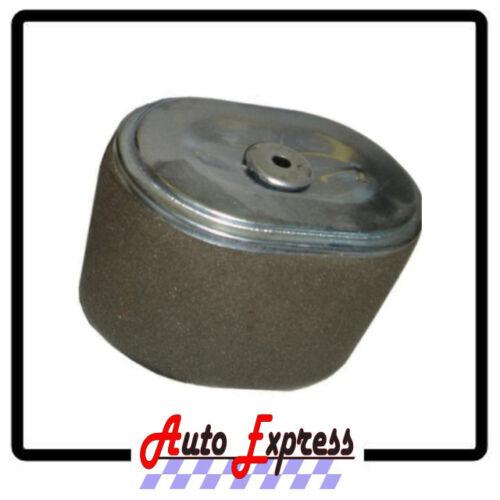 Air Cleaner Filtre élément Pour HONDA GX240 8HP GX270 9HP