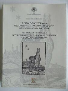 La-patologia-veterinaria-nel-museo-Alessandrini-Ercolani-dell-039-Universita-di