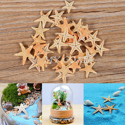 100x Mini Starfish Sea Star Shell Beach Wedding Craft DIY Making Decor Miniature