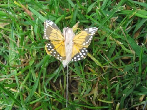Pequeña luz naranja Feather Mariposas-Jaspeada Alas 3.0 Cm-Set De 2