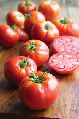 Dynamisch Gemüse - Tomate - Big Daddy - 10 Samen