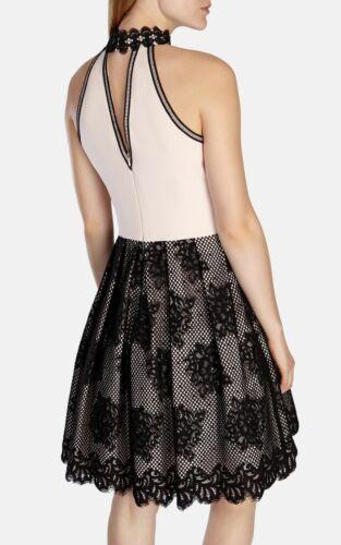 Millen Applique da Karen Uk New ballo 8 abito Atelier Size Velluto floreale nero FPqI0