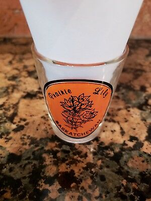 ILLINOIS THE PRAIRIE STATE ALL-AMERICAN COLLECTION SHOT GLASS SHOTGLASS