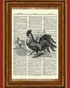 Rooster-Dictionary-Art-Print-Book-Page-Picture-Poster-Vintage-Kitchen-Wall-Decor