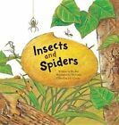 Insects and Spiders: Insects and Spiders by Bo Rin (Hardback, 2015)
