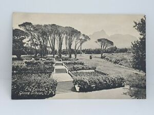 The-Terrace-Groote-Schuur-Cape-Town-Antique-Postcard