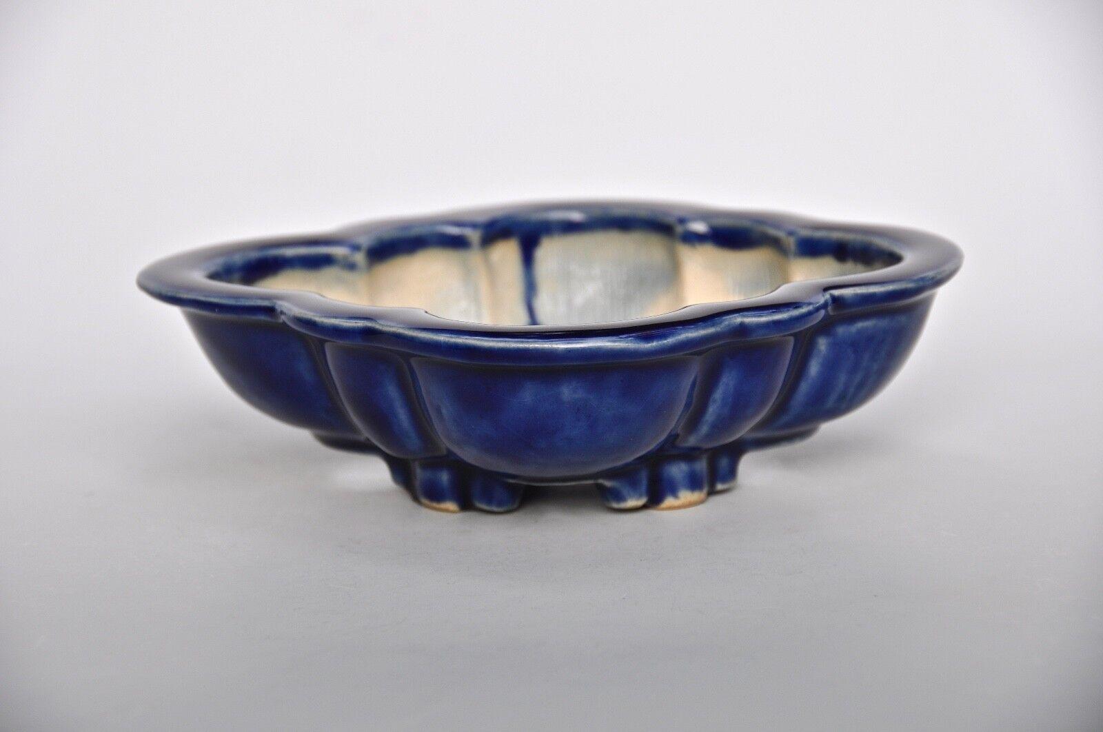 Sharaku Masahiro Shimotori Japanese Shohin Mokko Ruri Blau Glazed Bonsai Pot