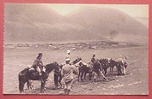 1920's Haleakala Summit Expedition Mules Horseback Maui TH Hawaii