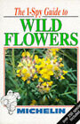 I-Spy Guide to Wild Flowers by Michelin Travel Publications (Paperback, 1996)