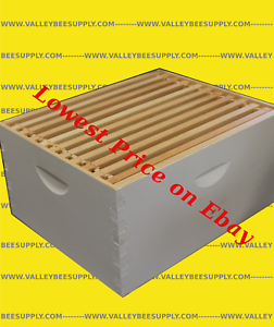 10F Painted Hive Body With Frames /& Beeswax Coated Plastic Foundation