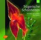Trügerische Schönheiten von Christian Ziegler (2012, Gebundene Ausgabe)