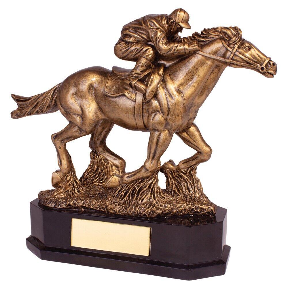 Resin Aintree Deluxe Equestrian Trophies Horse Racing Award 220mm FREE Engraving