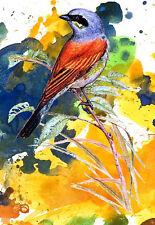 Art Card  from original watercolor painting Tara Tet ACEO Art Print