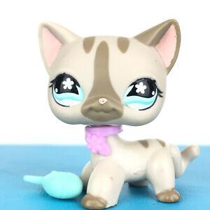 Authentic Littlest Pet Shop 468 Cat Short Hair Kitty Original Lps Clear Peg Ebay