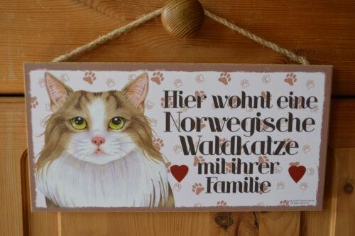 Türschild Haustierschild Schild Holzschild Deko Bild ♥ Waldkatze Katze NEU