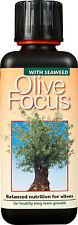 300ml-OLIVE Focus Pianta Per Cibo-Nutrienti concentrati per olive