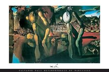 SALVADOR DALI ~ METAMORPHOSIS OF NARCISSUS 24x36 FINE ART POSTER Print