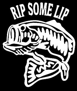 fishing life funny vinyl decal car bumper sticker 091