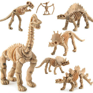 Novelty Assorted Dinosaur Fossil Skeleton Figures 12pcs Model Building Kits