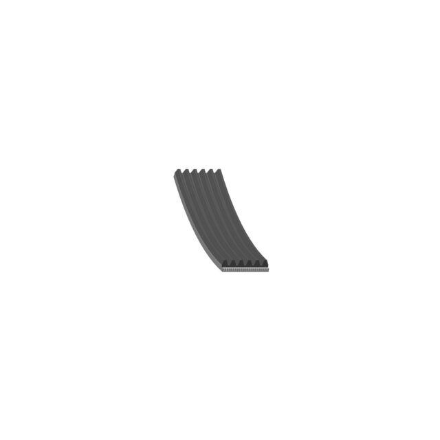 28916 Febi Bilstein Drive Belt Micro-V Multi Ribbed
