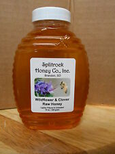 Fresh Raw Wildflower & Clover Honey from South Dakota Organic farm 6 lbs 1/2 gal