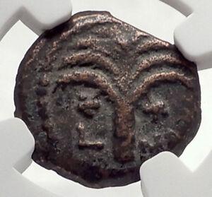 MARCUS-AMBIBULUS-Augustus-Jerusalem-Ancient-10AD-BIBLICAL-Roman-Coin-NGC-i70863