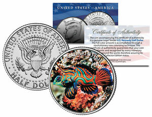 MANDARIN-FISH-Fish-Series-JFK-Kennedy-Half-Dollar-U-S-Colorized-Coin