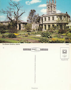 1979-039-s-THE-BOTANIC-GARDENS-OXFORD-OXFORDSHIRE-UNUSED-COLOUR-POSTCARD-a