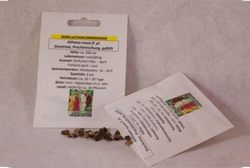 Stockrose splendeur Mélange rempli Alcea rosea graines semences Semences Professionnel Qualité