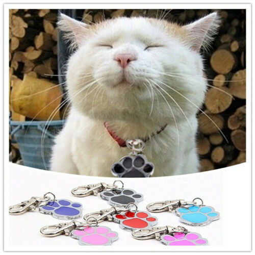 Unique Stainless Steel Paw Print Pendant Necklace Charm Tag For Pet Dog Cat BR