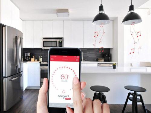 Sengled Pulse LED Bulb Wireless Speaker 2-pack C01BR30MSC C01BR30MSW C01BR30MSP