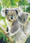 Discovering Australian Koalas Gift Book by Steve Parish (Paperback, 2001)