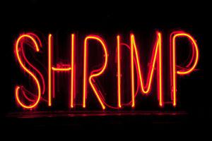 Shrimp Neon Sign Illuminated Photo Art Print Poster 18x12 inch