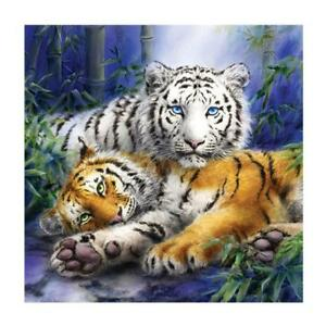 Back To Search Resultshome & Garden 5d Diy Diamond Painting Full Square Round Diamond Embroidery Tiger Inlay Art Fashion Crafts Gift Home Decoration Animal Snow Lustrous