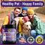 thumbnail 5 - Hemp Mobility Hip & Joint Supplement for Senior Dogs Chondroitin Glucosamine 90c