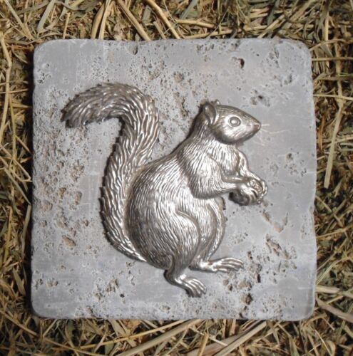 """squirrel travertine tile mold abs plastic mould 6/"""" x 6/"""" x 1//3/"""" thick"""