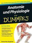 Anatomie und Physiologie für Dummies von Donna Rae Siegfried und Maggie Norris (2012, Taschenbuch)