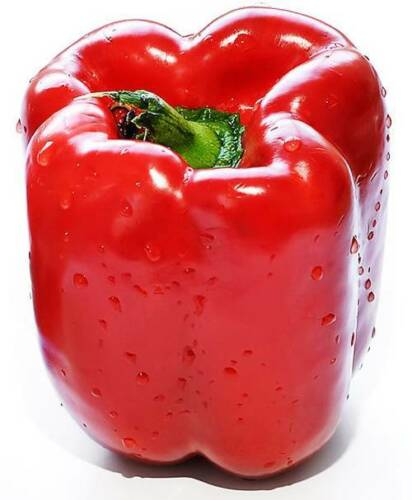 1 Pack 100 Red Sweet Pepper Seeds Paprike Capsicum Organic Vegetables S041