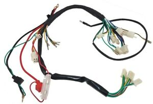WIRING HARNESS 50CC-110CC TWO HEADLIGHT CHINESE ATV TAOTAO VENTO WILDFIRE  XTREME | eBayeBay
